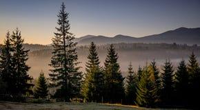 Ειδυλλιακή άποψη των Καρπάθιων βουνών στοκ εικόνες