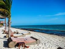 Ειδυλλιακή αμμώδης τροπική παραλία με τα κρεβάτια ημέρας στοκ εικόνα με δικαίωμα ελεύθερης χρήσης