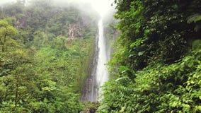 Ειδυλλιακός καταρράκτης και καταπληκτική φύση Άγριος ποταμός στη ζούγκλα δασική Chute du Carbet, Γουαδελούπη, καραϊβική απόθεμα βίντεο
