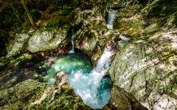 Ειδυλλιακός ποταμός βουνών στην κοιλάδα Lepena, Soca - Bovec Σλοβενία Στοκ εικόνα με δικαίωμα ελεύθερης χρήσης