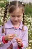 Εικασίες κοριτσιών σε έναν chamomile Στοκ Φωτογραφίες