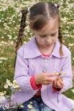 Εικασίες κοριτσιών σε chamomile Στοκ φωτογραφία με δικαίωμα ελεύθερης χρήσης