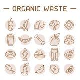 Εικονίδια οργανικών αποβλήτων καθορισμένα ελεύθερη απεικόνιση δικαιώματος
