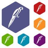 Εικονίδια παπαγάλων καθορισμένα ελεύθερη απεικόνιση δικαιώματος