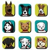 εικονίδια σκυλιών διασ&ta Στοκ φωτογραφίες με δικαίωμα ελεύθερης χρήσης