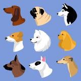 Εικονίδια σκυλιών στο επίπεδο ύφος Γεροδεμένες και άλλες φυλές διανυσματικού συνόλου Dachshund, Στοκ Εικόνες