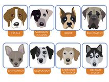 εικονίδια σκυλιών Στοκ φωτογραφία με δικαίωμα ελεύθερης χρήσης