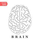 Εικονίδιο τέχνης γραμμών εγκεφάλου, μυαλού ή νοημοσύνης για τα apps και τους ιστοχώρους ελεύθερη απεικόνιση δικαιώματος