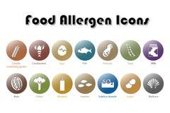 Εικονίδια αλλεργιογόνου τροφίμων Στοκ εικόνες με δικαίωμα ελεύθερης χρήσης