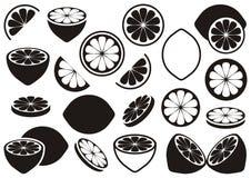 Εικονίδια λεμονιών Στοκ Εικόνες