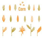 Εικονίδια καλαμποκιού Πρότυπο λογότυπων γεωργίας ελεύθερη απεικόνιση δικαιώματος