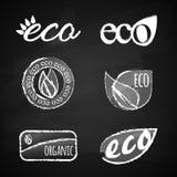 Εικονίδια κιμωλίας οικολογίας καθορισμένα Στοκ Εικόνες
