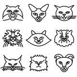 εικονίδια προσώπων γατών Στοκ Εικόνες