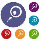 Εικονίδια σπέρματος χορηγών καθορισμένα Στοκ φωτογραφία με δικαίωμα ελεύθερης χρήσης