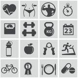 Εικονίδια υγείας και ικανότητας Στοκ εικόνα με δικαίωμα ελεύθερης χρήσης