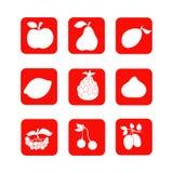 Εικονίδια 2 φρούτων Στοκ φωτογραφία με δικαίωμα ελεύθερης χρήσης
