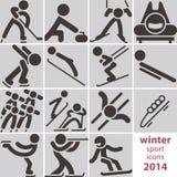 Εικονίδια χειμερινού αθλητισμού Στοκ Εικόνες