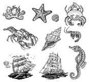 Εικονίδια Sealife Στοκ εικόνα με δικαίωμα ελεύθερης χρήσης