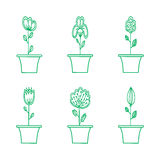 Εικονίδιο λουλουδιών που τίθεται στο καθιερώνον τη μόδα επίπεδο ύφος Στοκ Εικόνα