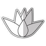 Εικονίδιο λουλουδιών Lotus Στοκ φωτογραφία με δικαίωμα ελεύθερης χρήσης