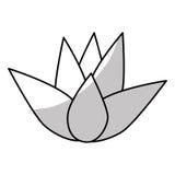 Εικονίδιο λουλουδιών Lotus Στοκ Φωτογραφία