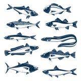 Εικονίδιο ψαριών θάλασσας που τίθεται για τα θαλασσινά και το σχέδιο αλιείας απεικόνιση αποθεμάτων