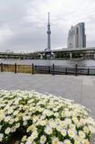 Εικονικά κτήρια όπως βλέπει από το πάρκο Sumida στοκ εικόνες
