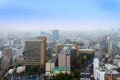 Εικονικές παραστάσεις πόλης του Τόκιο στην ομίχλη μετά από τη βροχή στη χειμερινή εποχή, ορίζοντας Στοκ εικόνα με δικαίωμα ελεύθερης χρήσης