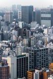 Εικονικές παραστάσεις πόλης του Τόκιο το χειμώνα ομίχλης, ορίζοντας του Τόκιο, γραφείο buil Στοκ εικόνα με δικαίωμα ελεύθερης χρήσης