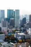 Εικονικές παραστάσεις πόλης του Τόκιο το χειμώνα ομίχλης, ορίζοντας του Τόκιο, γραφείο buil Στοκ Εικόνες