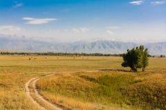 Εικονογραφικός τομέας σε ένα υπόβαθρο των βουνών στοκ εικόνες με δικαίωμα ελεύθερης χρήσης