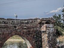 Εικόνα ενός πουλιού στις καταστροφές μιας παλαιάς γέφυρας με ένα υπόβαθρο μπλε ουρανού στοκ εικόνα με δικαίωμα ελεύθερης χρήσης