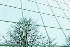 Εικόνα καθρεφτών στα παράθυρα γραφείων Στοκ φωτογραφίες με δικαίωμα ελεύθερης χρήσης