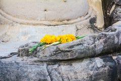 Εικόνα λουλουδιών σε διαθεσιμότητα του Βούδα Στοκ φωτογραφίες με δικαίωμα ελεύθερης χρήσης