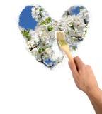 εικόνα λουλουδιών Στοκ φωτογραφία με δικαίωμα ελεύθερης χρήσης