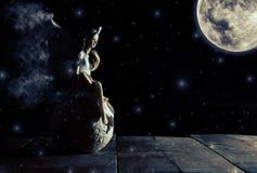 εικόνα μαγικού λίγη συνεδρίαση νεράιδων πέρα από την πέτρα στο moonligh Στοκ Εικόνες