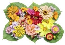 εικόνα μενταγιόν λουλο&ups Στοκ φωτογραφία με δικαίωμα ελεύθερης χρήσης