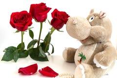 Εικόνα με τα κόκκινα τριαντάφυλλα Στοκ Εικόνα