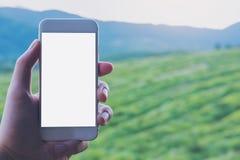 Εικόνα προτύπων ενός χεριού που κρατά και που παρουσιάζει άσπρο έξυπνο τηλέφωνο με την κενή οθόνη σε υπαίθριο Στοκ Εικόνα