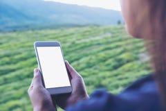 Εικόνα προτύπων μιας γυναίκας που κρατά και που χρησιμοποιεί το άσπρο έξυπνο τηλέφωνο με την κενή οθόνη σε υπαίθριο Στοκ φωτογραφίες με δικαίωμα ελεύθερης χρήσης