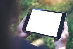 Εικόνα προτύπων των χεριών γυναικών ` s που κρατά το μαύρο PC ταμπλετών με την κενή άσπρη οθόνη και την πράσινη φύση Στοκ Εικόνες