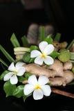εικόνα Ταϊλάνδη Στοκ εικόνα με δικαίωμα ελεύθερης χρήσης