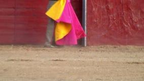Εικόνα ταύρων πάλης από την Ισπανία. μαύρος ταύρος φιλμ μικρού μήκους