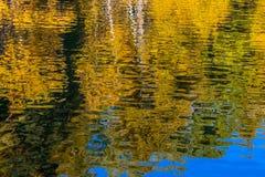 Εικόνα της αντανάκλασης των δέντρων φθινοπώρου στο νερό στοκ φωτογραφίες