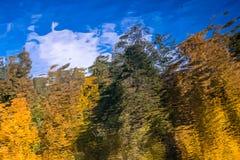 Εικόνα της αντανάκλασης των δέντρων φθινοπώρου στο νερό στοκ εικόνες