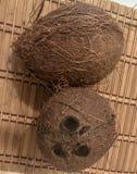 Εικόνα της καρύδας στοκ φωτογραφία με δικαίωμα ελεύθερης χρήσης