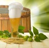 Εικόνα της μπύρας στην κινηματογράφηση σε πρώτο πλάνο κουπών Στοκ Εικόνες