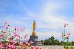 Εικόνα του Βούδα με τον ουρανό ομορφιάς στοκ εικόνες με δικαίωμα ελεύθερης χρήσης