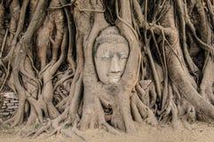 Εικόνα του Βούδα ψαμμίτη στοκ φωτογραφία με δικαίωμα ελεύθερης χρήσης