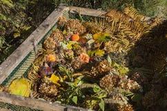 Εικόνα του δοχείου λιπάσματος στον κήπο στοκ εικόνα